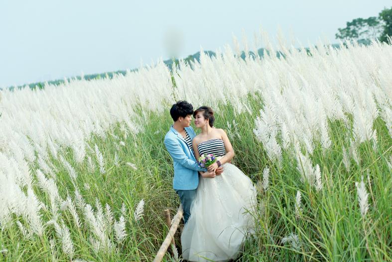 chụp ngoại cảnh đẹp với đồng cỏ lau