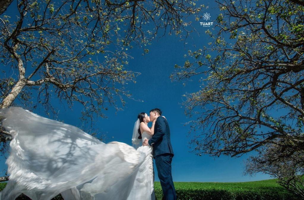 Studio chụp hình cưới Đà Lạt đẹp nhất cũng như nổi tiếng hiện nay