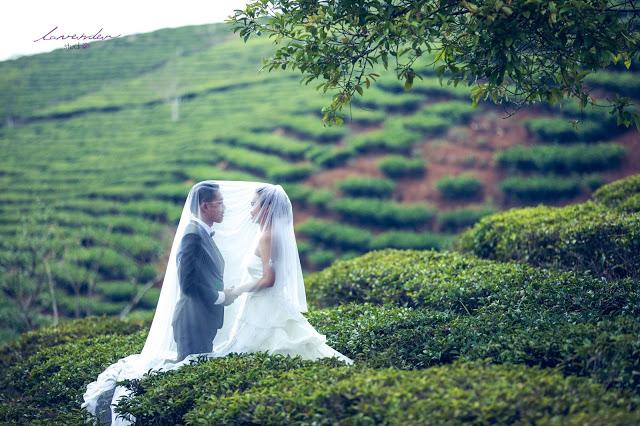 chụp hình cưới Đà Lạt giá rẻ, uy tín