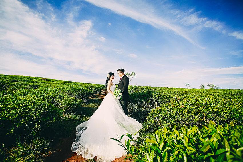Bảng giá chụp hình cưới Đà Lạt đắt không